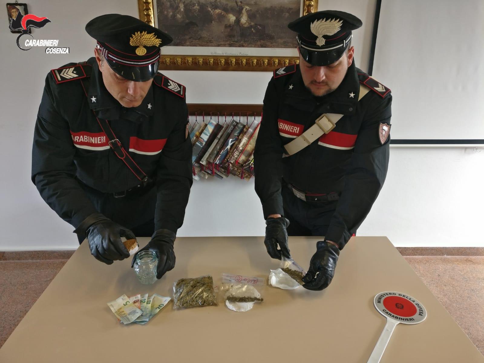 foto droga marijuana arresto longobardi