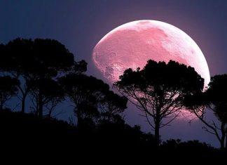 """Il disco lunare """"colorato"""" sarà ben visibile dal 19 Aprile quando il satellite ha raggiunto la sua minima distanza dalla Terra. Lo spettacolo celeste fino a lunedì sera"""