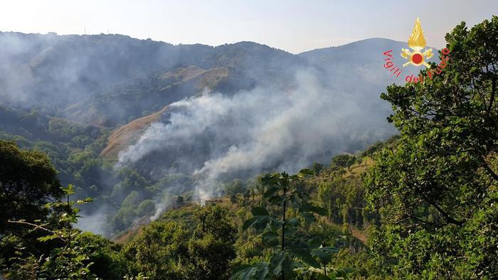 Incendio vicino ad area Parco Biodiversità Catanzaro