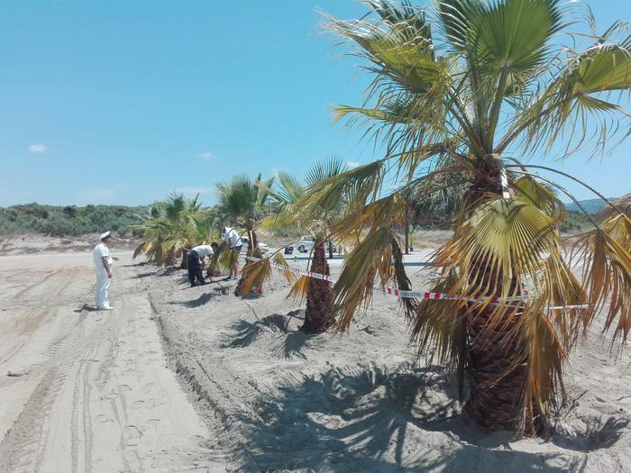 A Curinga Occupa spiaggia senza permessi, sequestro e denuncia